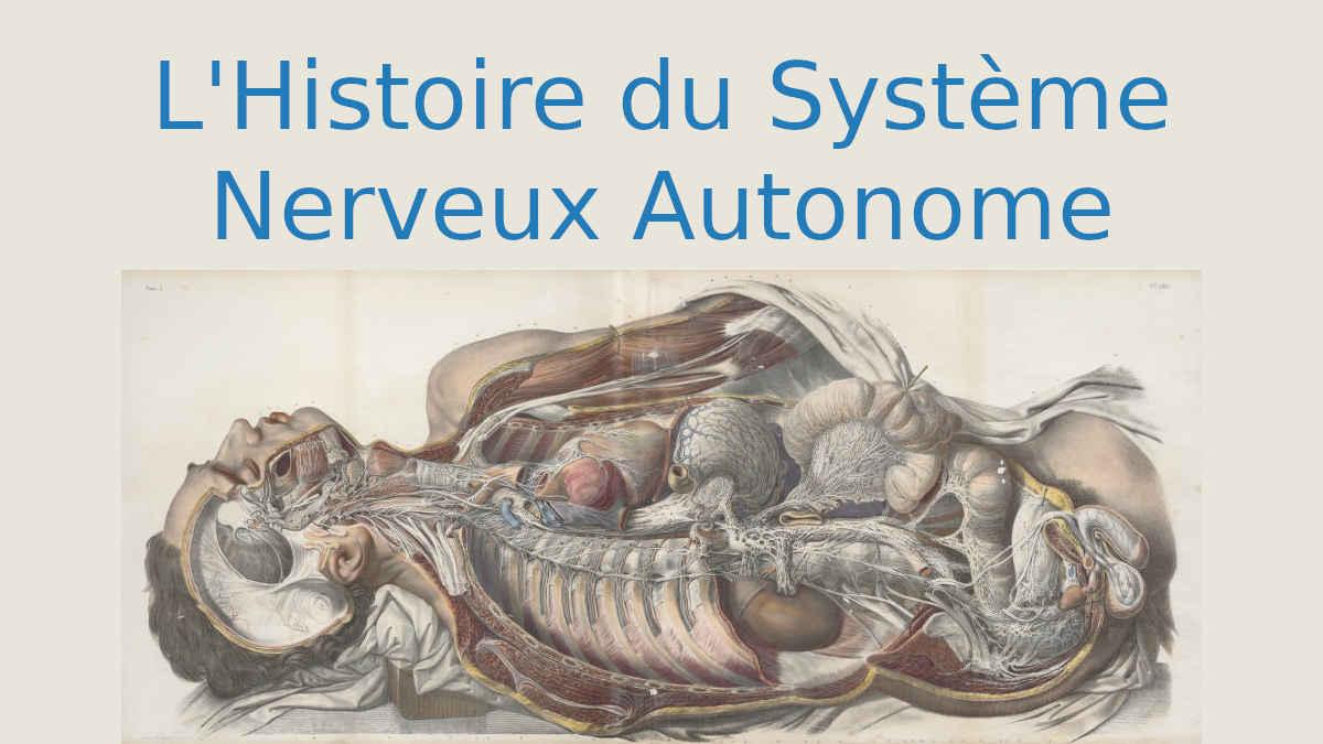L'histoire du système nerveux autonome